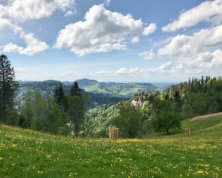 《 企画感想文:5月の企画 Hörnliのハイキングを終えて 》